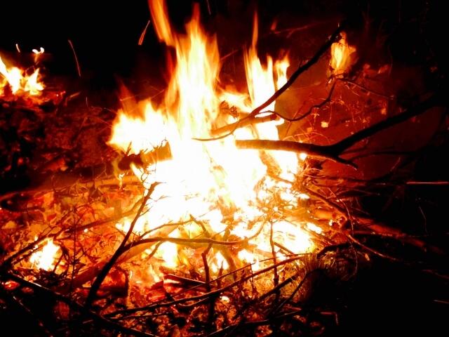山火事 原因